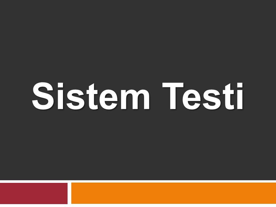 Sistem Testi