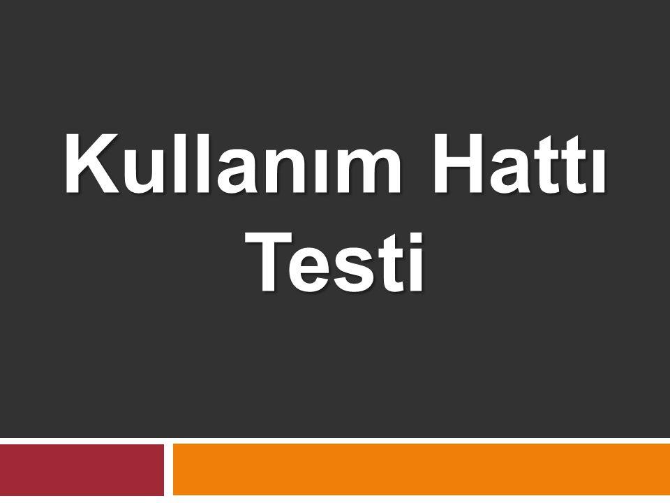 Kullanım Hattı Testi