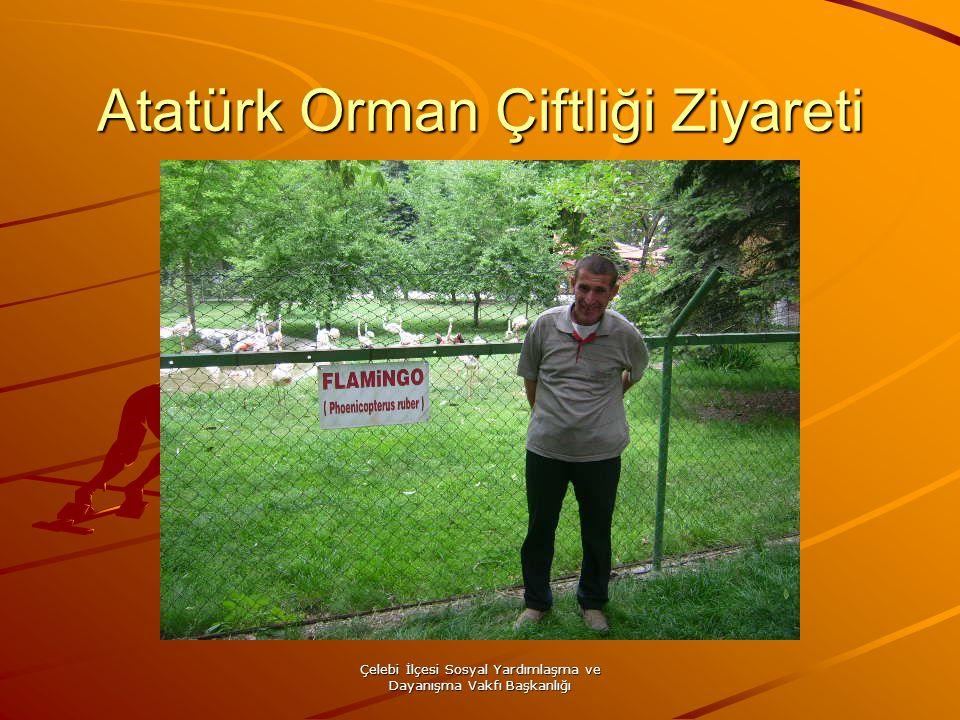 Çelebi İlçesi Sosyal Yardımlaşma ve Dayanışma Vakfı Başkanlığı Atatürk Orman Çiftliği Ziyareti