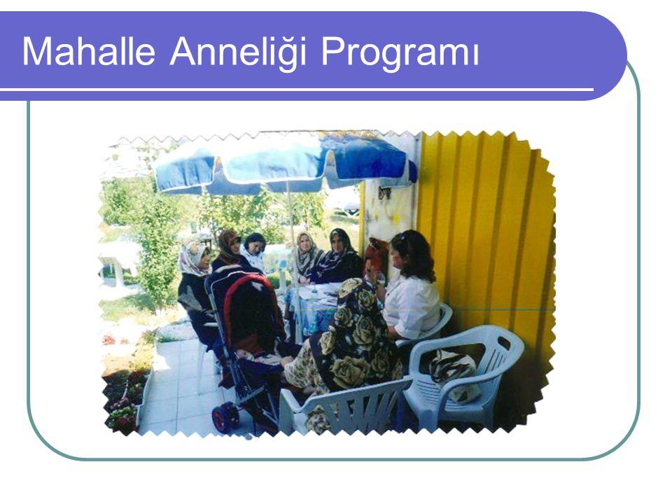 Mahalle Anneliği Programı