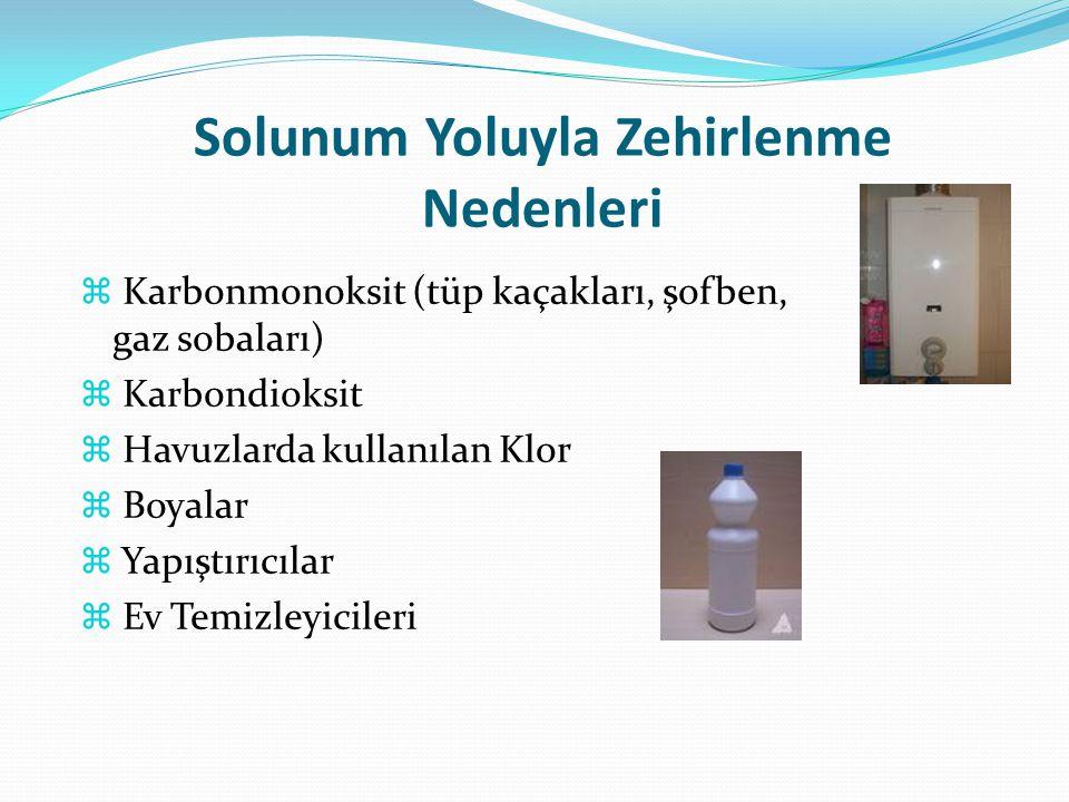 Solunum Yoluyla Zehirlenme Nedenleri  Karbonmonoksit (tüp kaçakları, şofben, gaz sobaları)  Karbondioksit  Havuzlarda kullanılan Klor  Boyalar  Y