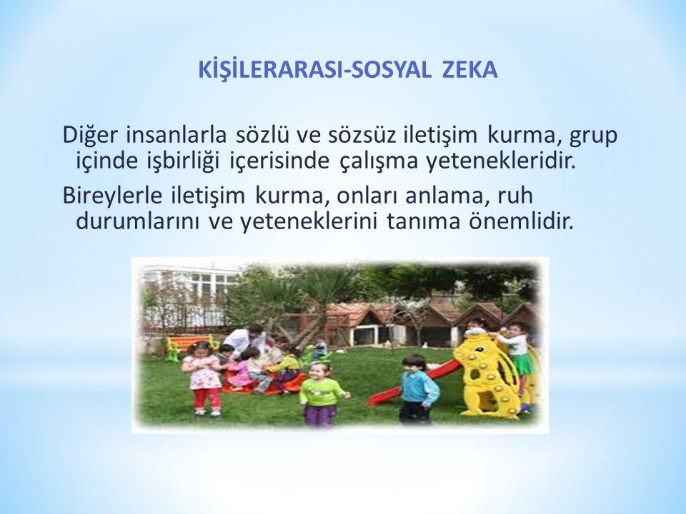 KİŞİLERARASI-SOSYAL ZEKA Diğer insanlarla sözlü ve sözsüz iletişim kurma, grup içinde işbirliği içerisinde çalışma yetenekleridir. Bireylerle iletişim