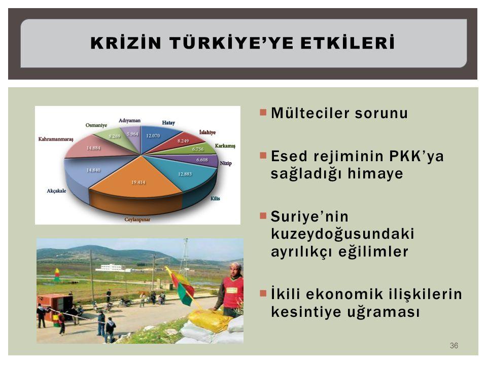  Mülteciler sorunu  Esed rejiminin PKK'ya sağladığı himaye  Suriye'nin kuzeydoğusundaki ayrılıkçı eğilimler  İkili ekonomik ilişkilerin kesintiye