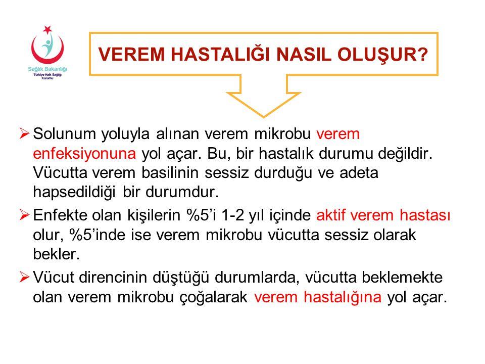 Tüberküloz İnsidans Hızları - 2012 Türkiye'nin 2012 yılı tahmini TB İnsidansı: Yüz binde 22