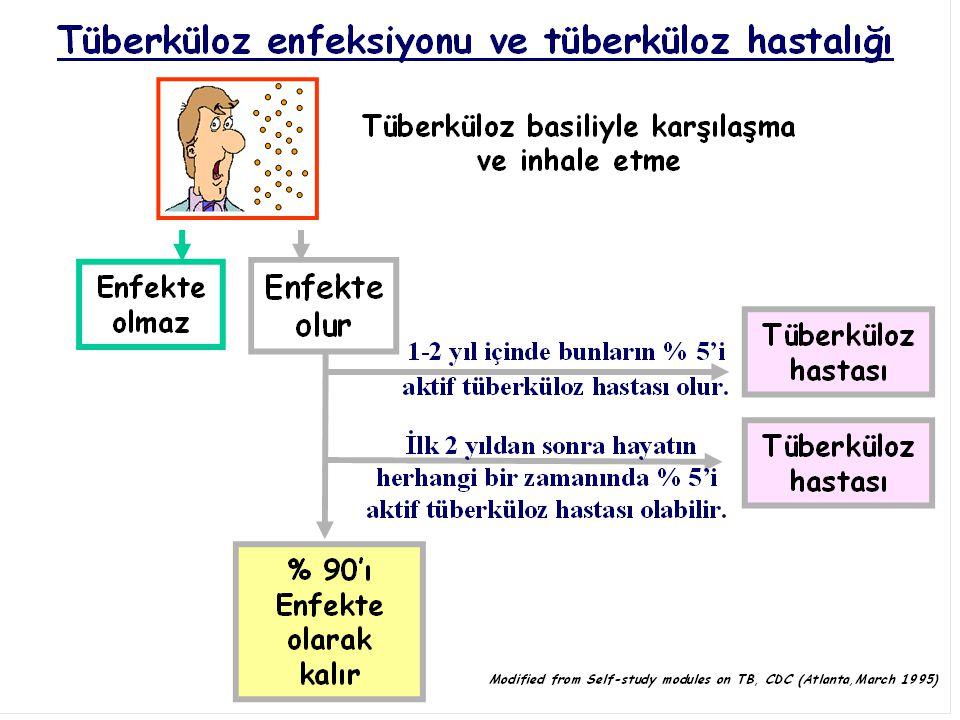 7 Tedavi olmayan bir tüberküloz hastası her yıl yaklaşık 10-15 kişiyi enfekte eder (tedavi olmayan dirençli bir hasta da dirençli mikropları bulaştırır) TB hastası
