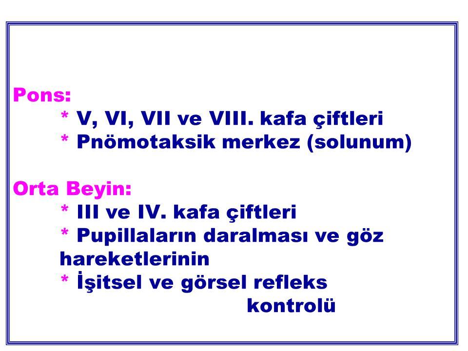 Pons: * V, VI, VII ve VIII.kafa çiftleri * Pnömotaksik merkez (solunum) Orta Beyin: * III ve IV.
