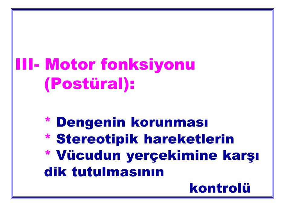 III- Motor fonksiyonu (Postüral): * Dengenin korunması * Stereotipik hareketlerin * Vücudun yerçekimine karşı dik tutulmasının kontrolü
