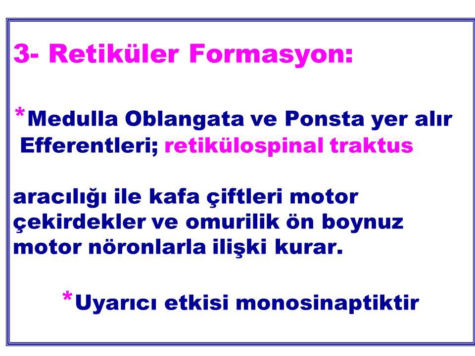 3- Retiküler Formasyon: * Medulla Oblangata ve Ponsta yer alır Efferentleri; retikülospinal traktus aracılığı ile kafa çiftleri motor çekirdekler ve omurilik ön boynuz motor nöronlarla ilişki kurar.