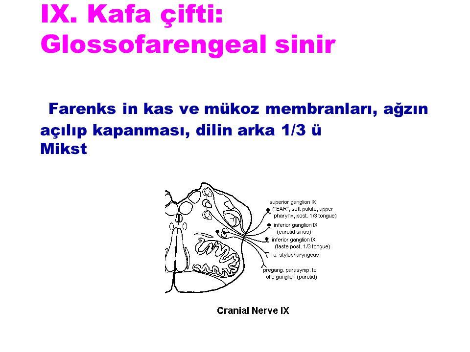 IX. Kafa çifti: Glossofarengeal sinir Farenks in kas ve mükoz membranları, ağzın açılıp kapanması, dilin arka 1/3 ü Mikst