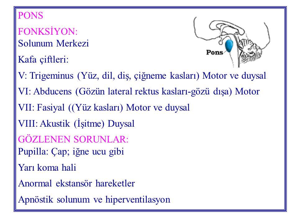 PONS FONKSİYON: Solunum Merkezi Kafa çiftleri: V: Trigeminus (Yüz, dil, diş, çiğneme kasları) Motor ve duysal VI: Abducens (Gözün lateral rektus kasları-gözü dışa) Motor VII: Fasiyal ((Yüz kasları) Motor ve duysal VIII: Akustik (İşitme) Duysal GÖZLENEN SORUNLAR: Pupilla: Çap; iğne ucu gibi Yarı koma hali Anormal ekstansör hareketler Apnöstik solunum ve hiperventilasyon