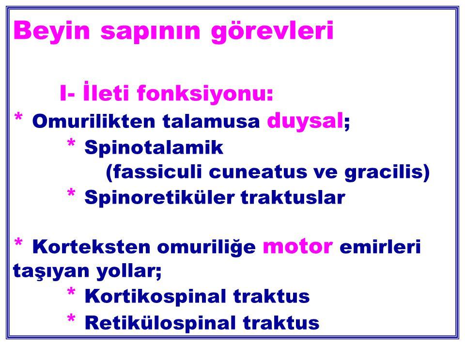 Beyin sapının görevleri I- İleti fonksiyonu: * Omurilikten talamusa duysal ; * Spinotalamik (fassiculi cuneatus ve gracilis) * Spinoretiküler traktuslar * Korteksten omuriliğe motor emirleri taşıyan yollar; * Kortikospinal traktus * Retikülospinal traktus