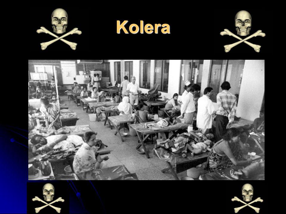 Kolera