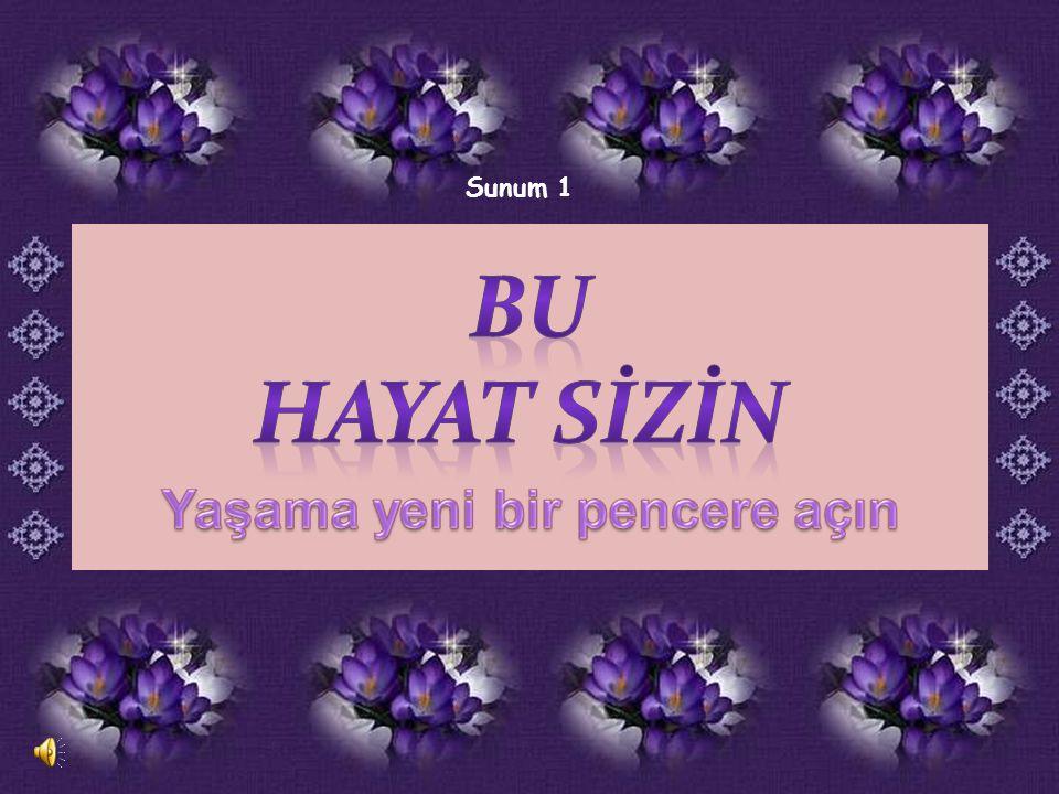 Sunum 1