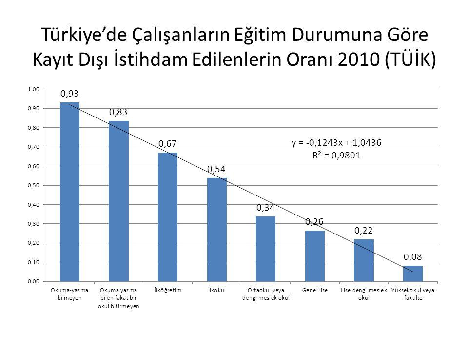 Türkiye'de Çalışanların Eğitim Durumuna Göre Kayıt Dışı İstihdam Edilenlerin Oranı 2010 (TÜİK)