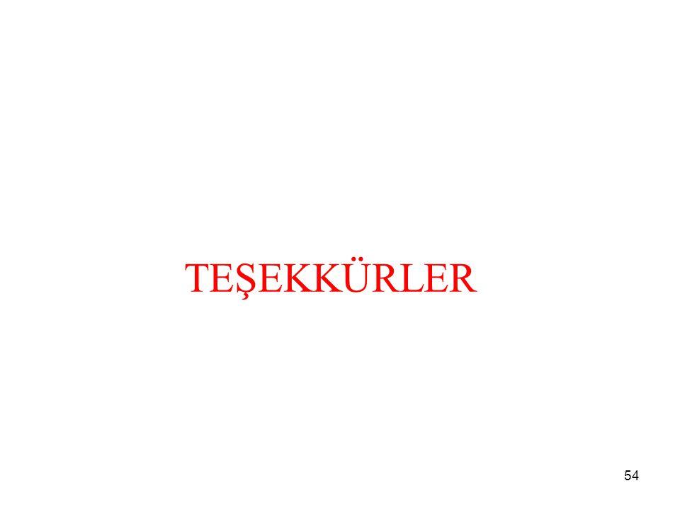 TEŞEKKÜRLER 54