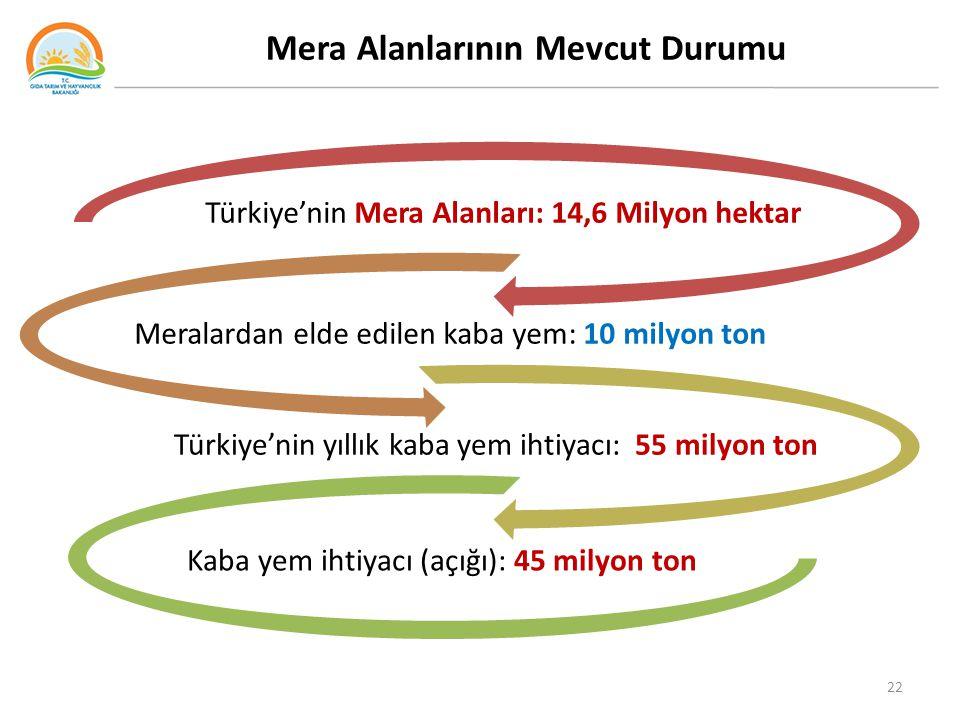 Mera Alanlarının Mevcut Durumu Türkiye'nin Mera Alanları: 14,6 Milyon hektar Meralardan elde edilen kaba yem: 10 milyon ton Türkiye'nin yıllık kaba yem ihtiyacı: 55 milyon ton Kaba yem ihtiyacı (açığı): 45 milyon ton 22
