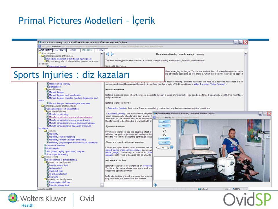 Sports Injuries : diz kazaları Primal Pictures Modelleri – İçerik