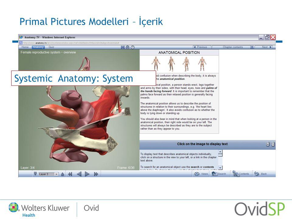 Primal Pictures Modelleri – İçerik Systemic Anatomy: System