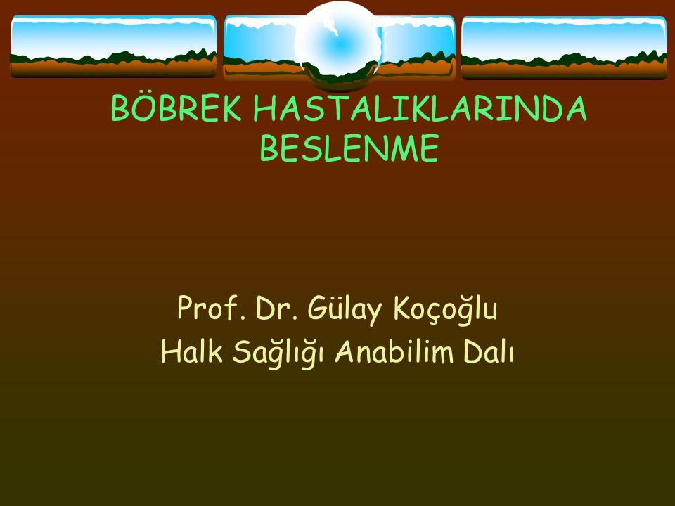 BÖBREK HASTALIKLARINDA BESLENME Prof. Dr. Gülay Koçoğlu Halk Sağlığı Anabilim Dalı