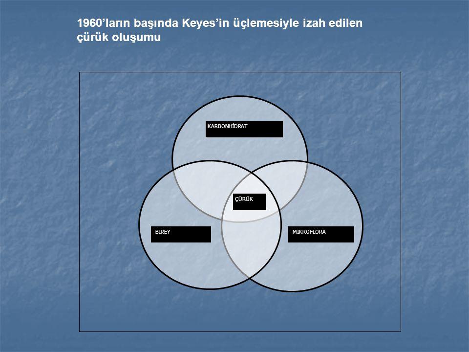 KARBONHİDRAT MİKROFLORABİREY ÇÜRÜK 1960'ların başında Keyes'in üçlemesiyle izah edilen çürük oluşumu