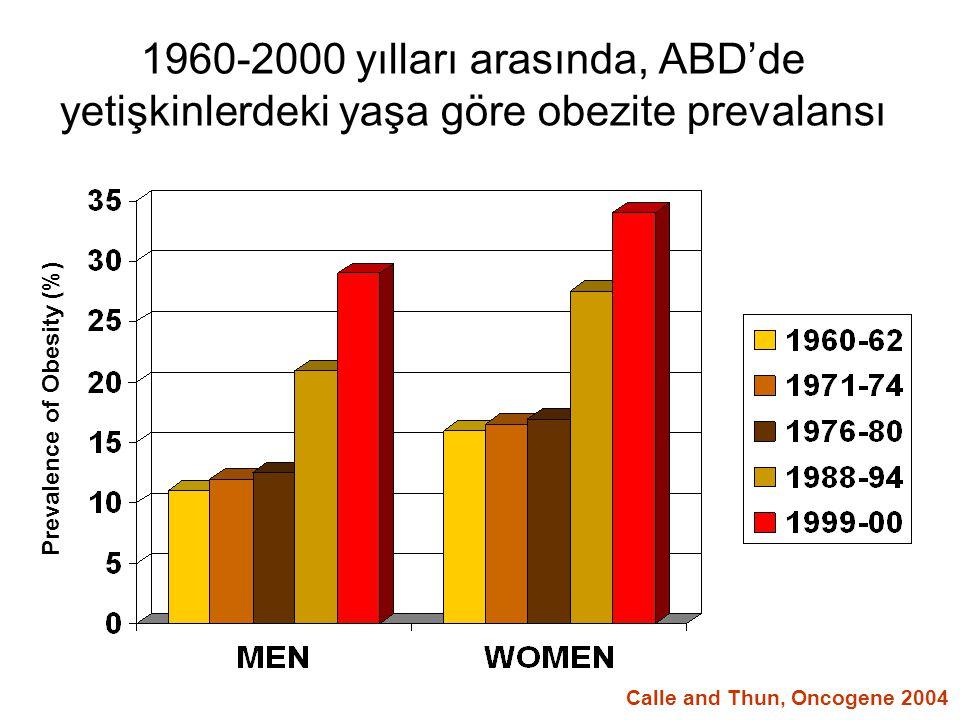 1960-2000 yılları arasında, ABD'de yetişkinlerdeki yaşa göre obezite prevalansı Prevalence of Obesity (%) Calle and Thun, Oncogene 2004