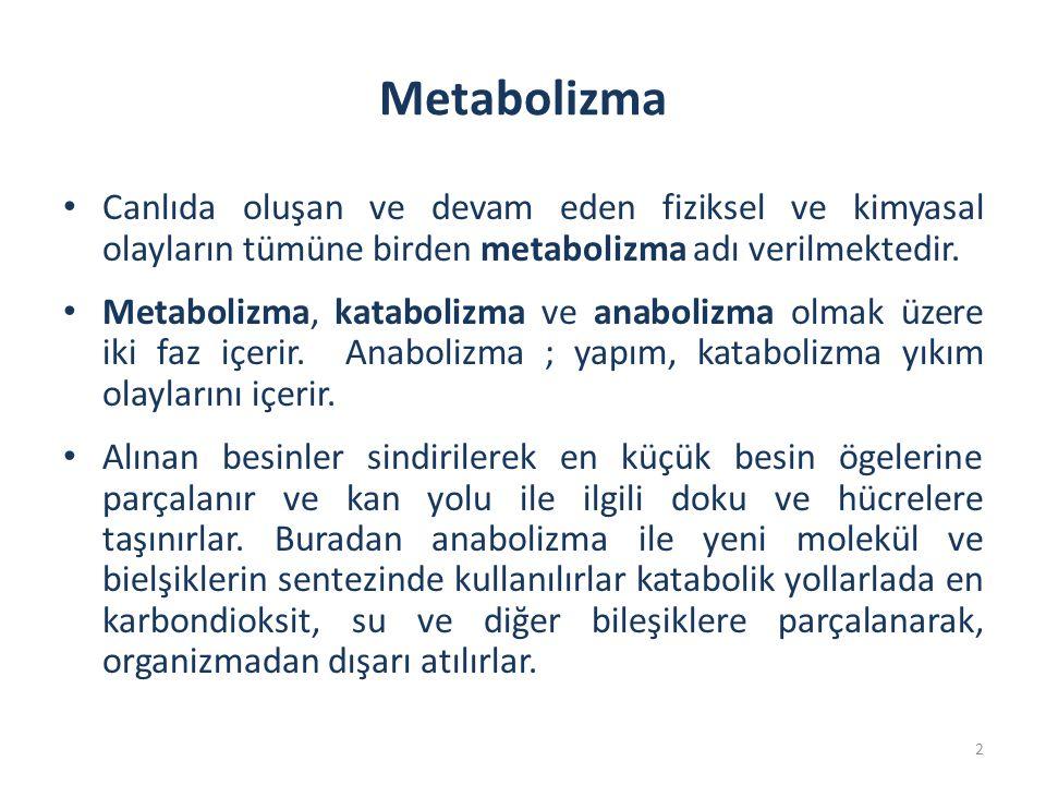 Metabolizma Canlıda oluşan ve devam eden fiziksel ve kimyasal olayların tümüne birden metabolizma adı verilmektedir. Metabolizma, katabolizma ve anabo