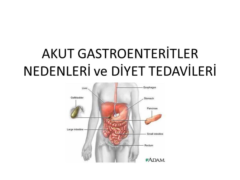 GASTROENTERİT Gastroenterit: Sindirim sisteminde(barsak) inflamasyonu sonucu sulu ve çok sayıda dışkılama ishal=diyare(eş anlamlı) akut kronik
