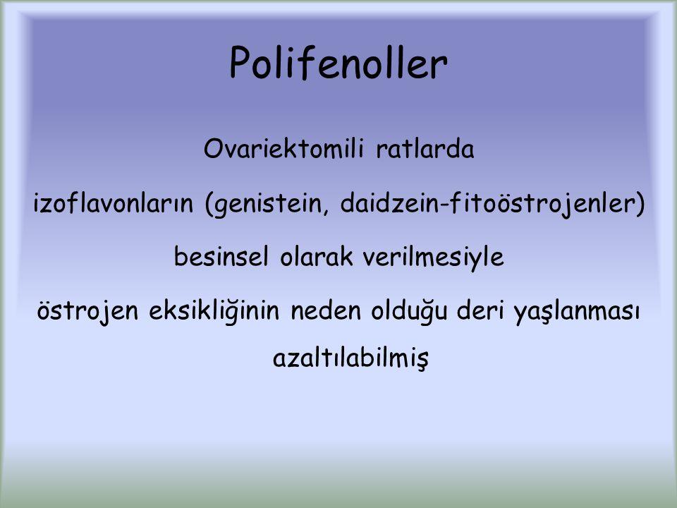 Polifenoller Ovariektomili ratlarda izoflavonların (genistein, daidzein-fitoöstrojenler) besinsel olarak verilmesiyle östrojen eksikliğinin neden olduğu deri yaşlanması azaltılabilmiş