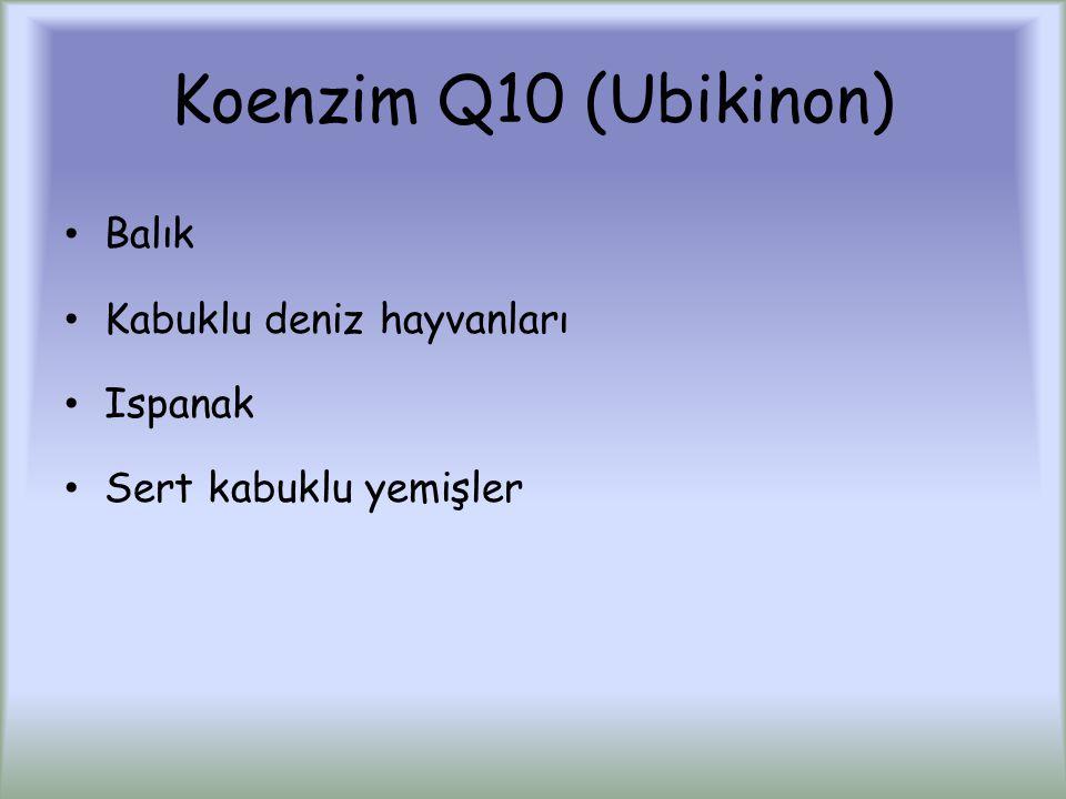 Koenzim Q10 (Ubikinon) Balık Kabuklu deniz hayvanları Ispanak Sert kabuklu yemişler