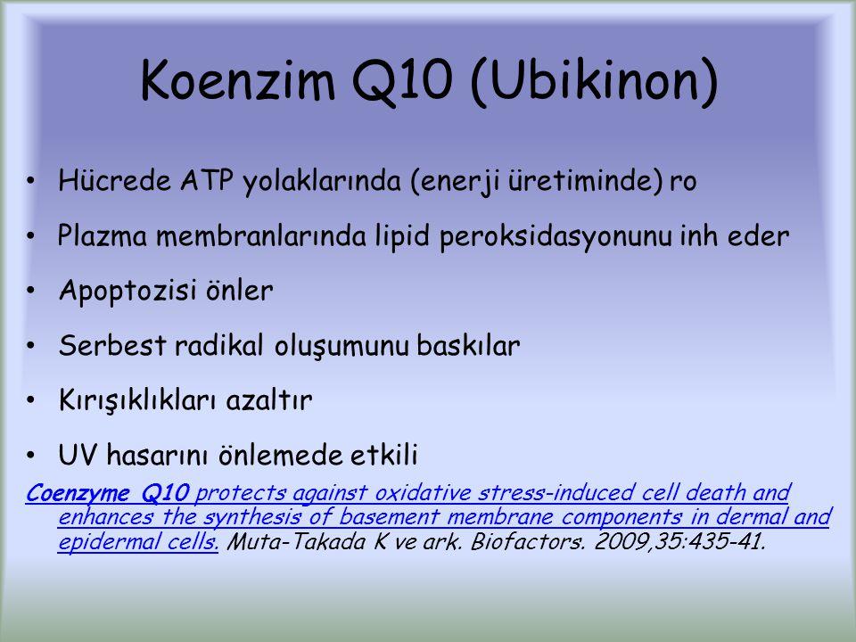 Koenzim Q10 (Ubikinon) Hücrede ATP yolaklarında (enerji üretiminde) ro Plazma membranlarında lipid peroksidasyonunu inh eder Apoptozisi önler Serbest radikal oluşumunu baskılar Kırışıklıkları azaltır UV hasarını önlemede etkili Coenzyme Q10 protects against oxidative stress-induced cell death and enhances the synthesis of basement membrane components in dermal and epidermal cells.Coenzyme Q10 protects against oxidative stress-induced cell death and enhances the synthesis of basement membrane components in dermal and epidermal cells.