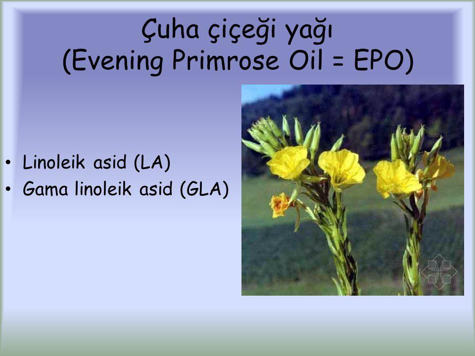 Çuha çiçeği yağı (Evening Primrose Oil = EPO) Linoleik asid (LA) Gama linoleik asid (GLA)