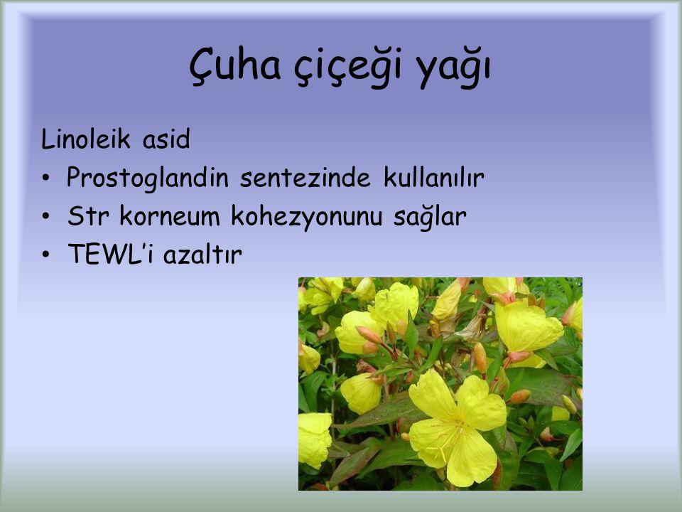 Çuha çiçeği yağı Linoleik asid Prostoglandin sentezinde kullanılır Str korneum kohezyonunu sağlar TEWL'i azaltır