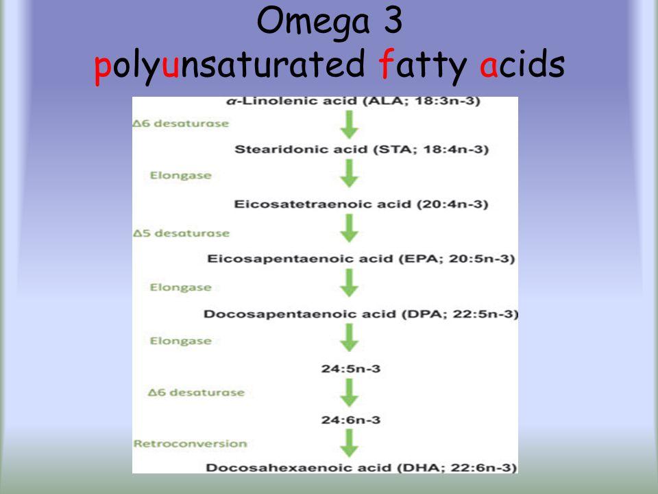 Polifenoller Stilbenler (kırmızı şaraptaki resveratrol) Lignanlar (keten/keten tohumu yağındaki enterodiol) Taninler (nar, çilek, yaban mersini, cevizdeki ellagik asid) Hidroksisinamik asid Fenolik asid