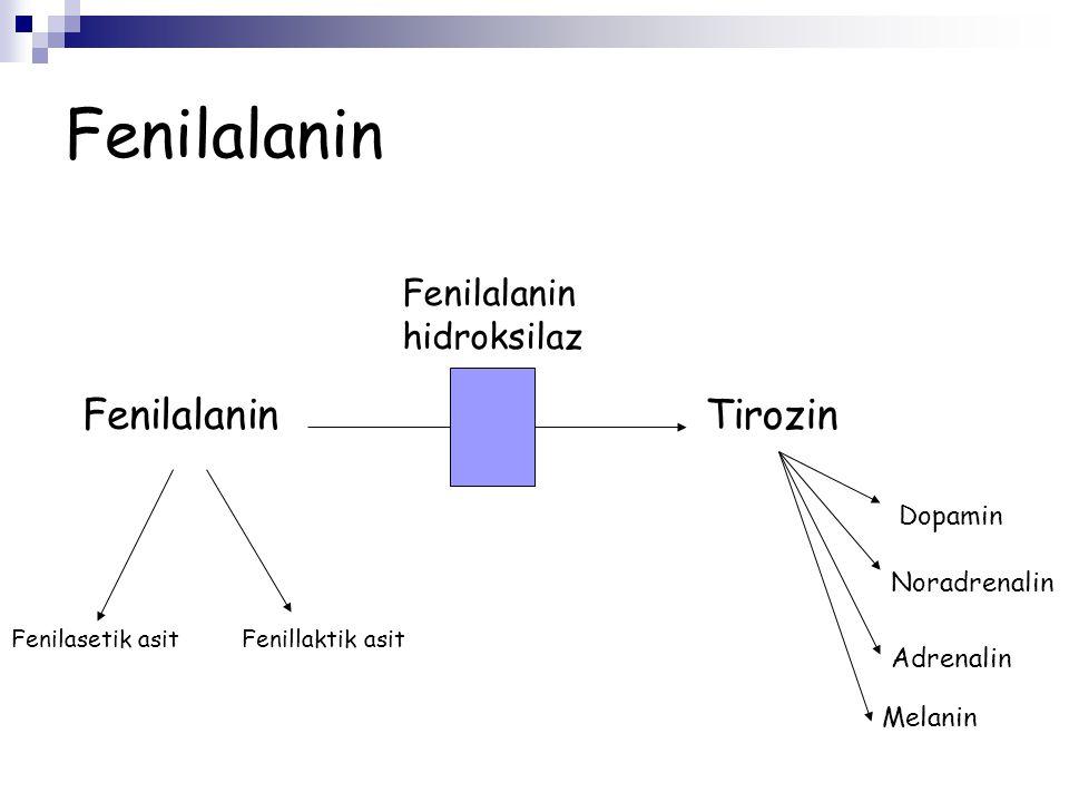 Fenilketonüri Fenilalanin metabolize edilemez Fenilalanin hidroksilaz enzim aktivitesi azalmıştır Enzim eksiktir ( Geni 12 kromozomda kodlanmıştır -12q22-q24) BH4 metabolizması bozukluğu enzim aktivitesini azaltır (Ek belirti ve bulgular nörotransmitter eksikliği nedeni iledir)