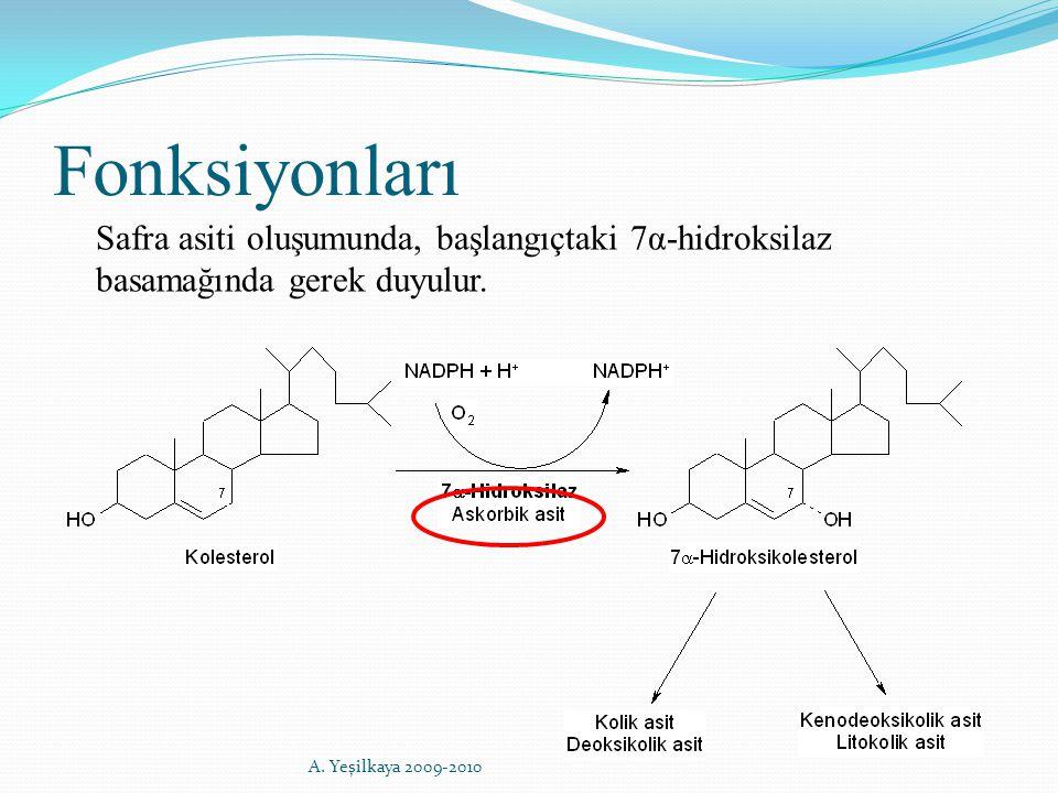 Fonksiyonları Safra asiti oluşumunda, başlangıçtaki 7α-hidroksilaz basamağında gerek duyulur. A. Yeşilkaya 2009-2010