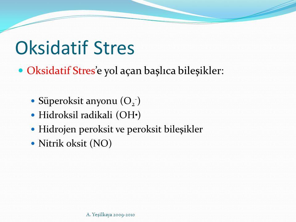 Oksidatif Stres Oksidatif Stres'e yol açan başlıca bileşikler: Süperoksit anyonu (O 2 - ) Hidroksil radikali (OH. ) Hidrojen peroksit ve peroksit bile