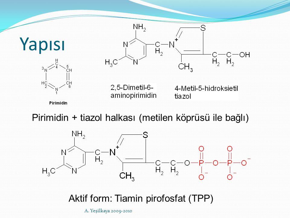 Pirimidin + tiazol halkası (metilen köprüsü ile bağlı) Aktif form: Tiamin pirofosfat (TPP) Yapısı A. Yeşilkaya 2009-2010