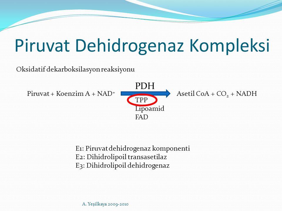 Piruvat Dehidrogenaz Kompleksi Piruvat + Koenzim A + NAD + Asetil CoA + CO 2 + NADH TPP Lipoamid FAD PDH E1: Piruvat dehidrogenaz komponenti E2: Dihid