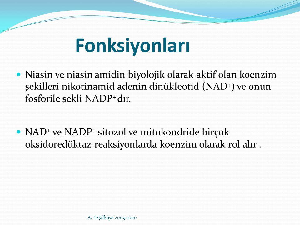 Fonksiyonları Niasin ve niasin amidin biyolojik olarak aktif olan koenzim şekilleri nikotinamid adenin dinükleotid (NAD + ) ve onun fosforile şekli NA