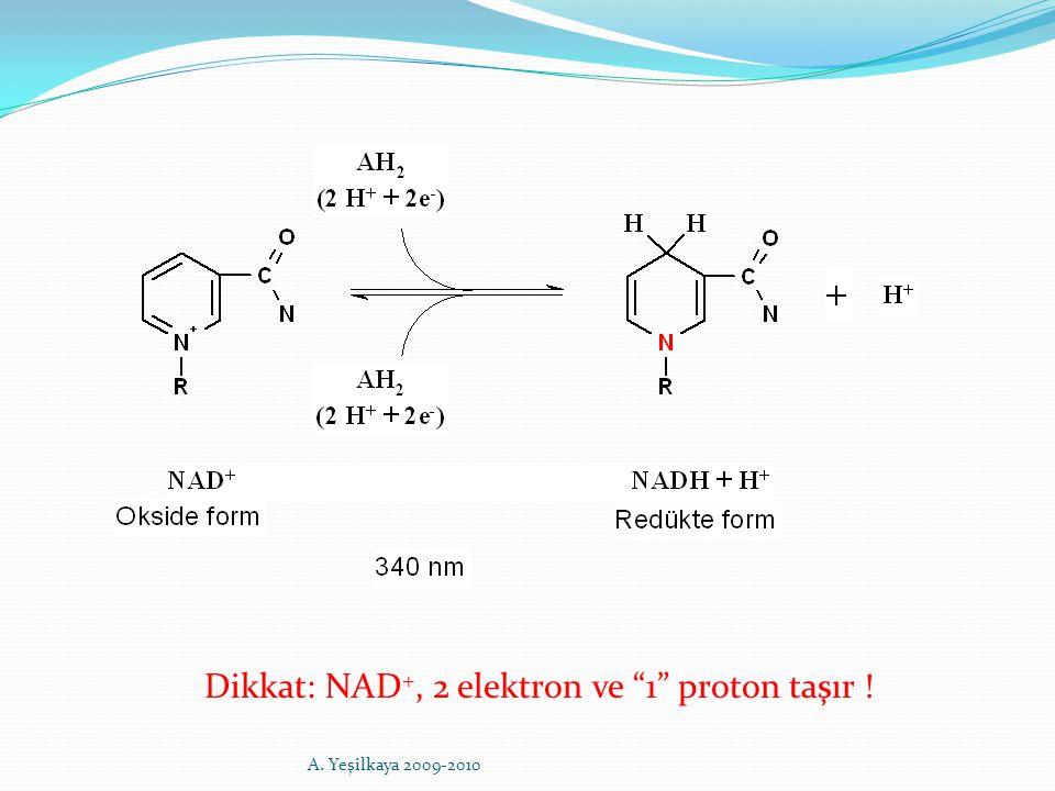 """Dikkat: NAD +, 2 elektron ve """"1"""" proton taşır ! A. Yeşilkaya 2009-2010"""