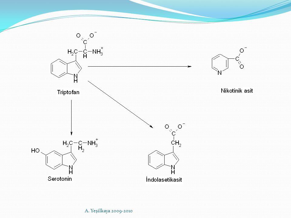 Pantotenik Asit (B5) Aktif formu; Koenzim A ve Açil taşıyıcı proteinin (ACP) yapısında yer alır Kaynakları: Yumurta, karaciğer ve bira mayası başta olmak üzere çoğu yiyecekte bulunur.