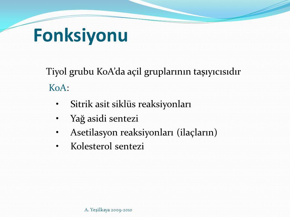 Tiyol grubu KoA'da açil gruplarının taşıyıcısıdır KoA: Sitrik asit siklüs reaksiyonları Yağ asidi sentezi Asetilasyon reaksiyonları (ilaçların) Kolest