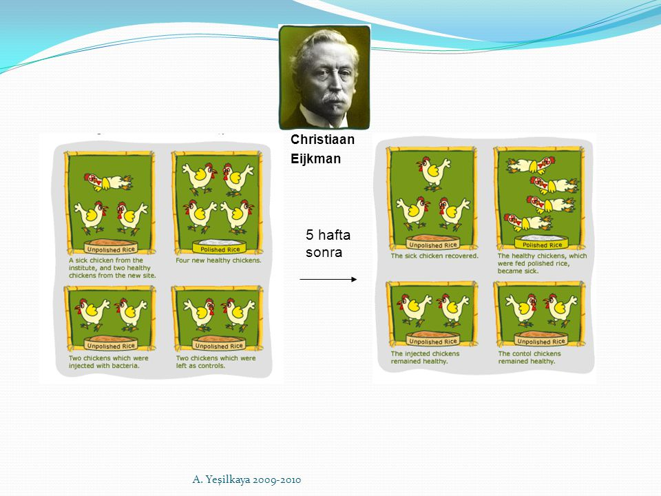5 hafta sonra Christiaan Eijkman A. Yeşilkaya 2009-2010