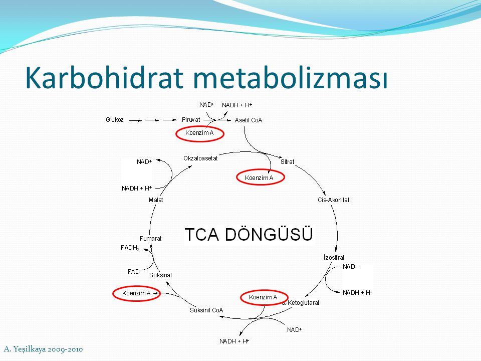 Karbohidrat metabolizması A. Yeşilkaya 2009-2010