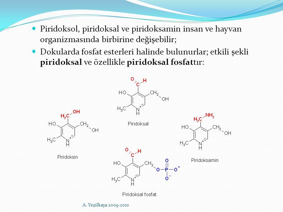 Piridoksol, piridoksal ve piridoksamin insan ve hayvan organizmasında birbirine değişebilir; Dokularda fosfat esterleri halinde bulunurlar; etkili şek