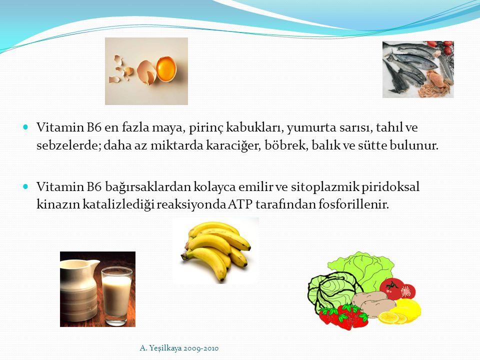 Vitamin B6 en fazla maya, pirinç kabukları, yumurta sarısı, tahıl ve sebzelerde; daha az miktarda karaciğer, böbrek, balık ve sütte bulunur. Vitamin B