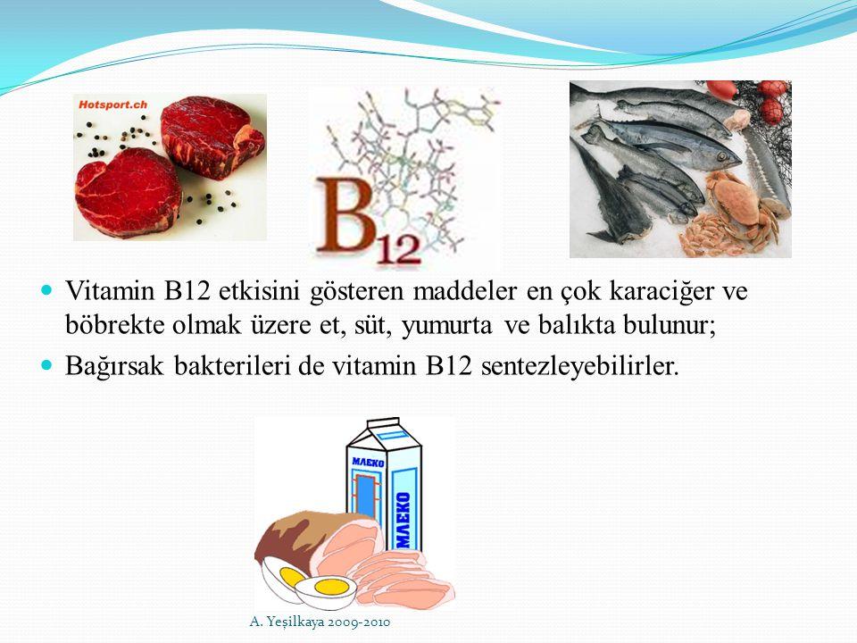 Vitamin B12 etkisini gösteren maddeler en çok karaciğer ve böbrekte olmak üzere et, süt, yumurta ve balıkta bulunur; Bağırsak bakterileri de vitamin B