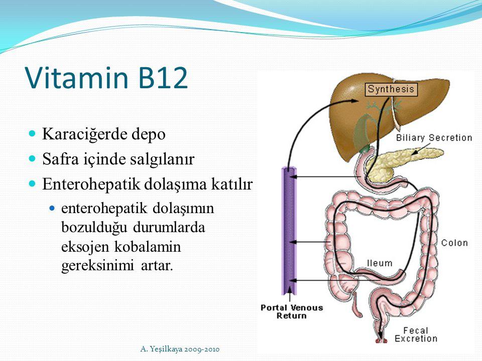 Vitamin B12 Karaciğerde depo Safra içinde salgılanır Enterohepatik dolaşıma katılır enterohepatik dolaşımın bozulduğu durumlarda eksojen kobalamin ger