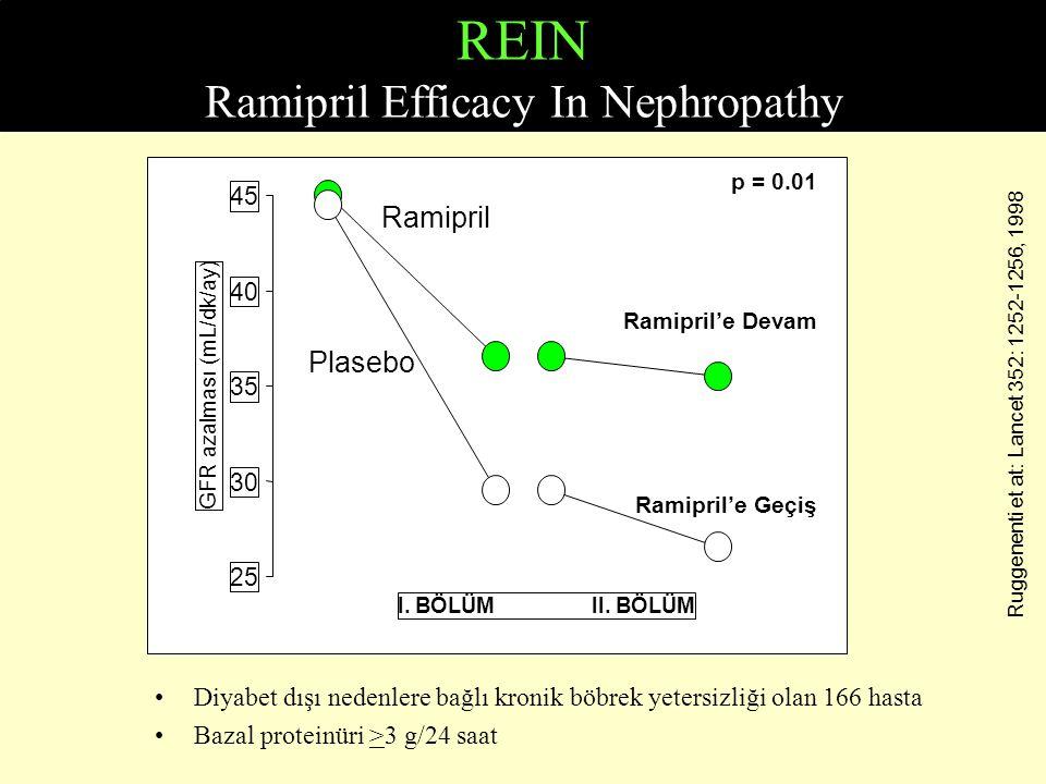 REIN Ramipril Efficacy In Nephropathy Diyabet dışı nedenlere bağlı kronik böbrek yetersizliği olan 166 hasta Bazal proteinüri >3 g/24 saat 2 25 30 35
