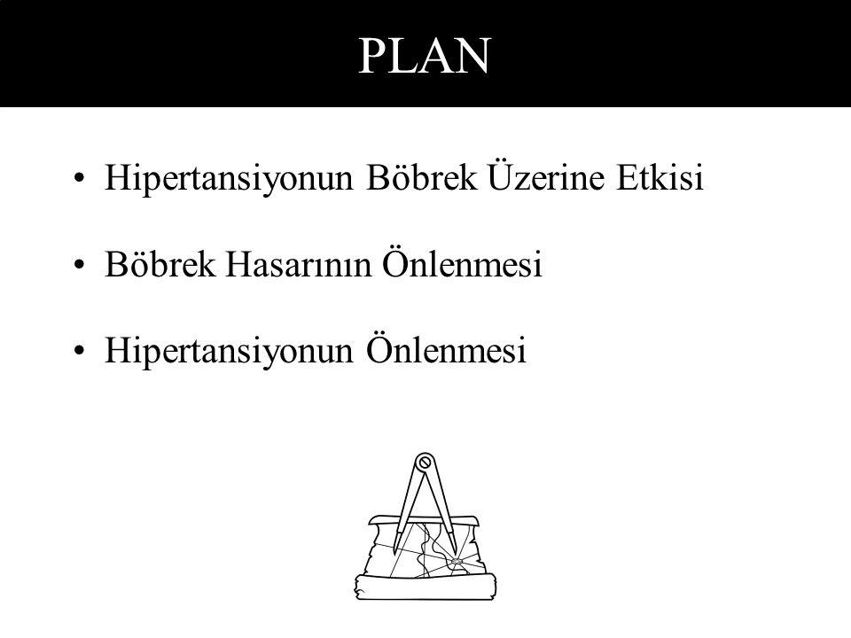 PLAN Hipertansiyonun Böbrek Üzerine Etkisi Böbrek Hasarının Önlenmesi Hipertansiyonun Önlenmesi